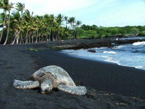 20-playas-mas-extranas-y-locas-del-mundo-11-730x548