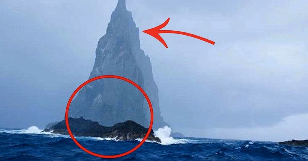 En esta isla vive el animal más aterrador del mundo y desde hoy se volverá parte de tus pesadillas!